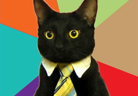 Бизнесс-кошка