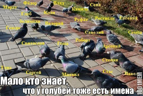 С�ндовил� u1049740 Ново��и П�икол� Комик�� Мем�