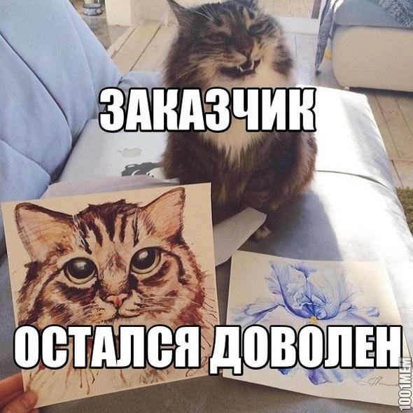 Кот доволен!