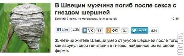 http://img.1001mem.ru/posts/3637000/3636968.jpg