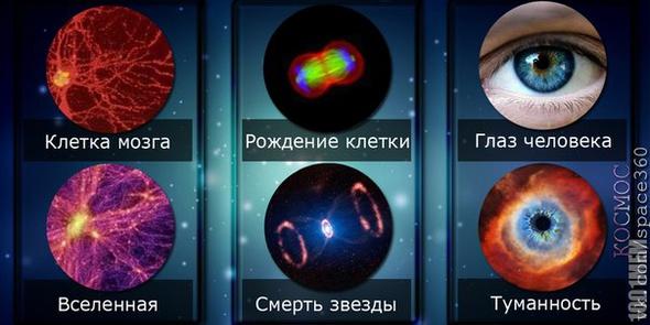 Факт о Космосе #1