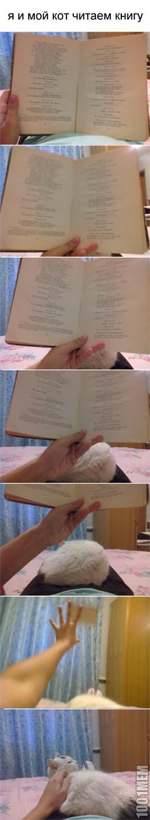 читайте книгу правильно