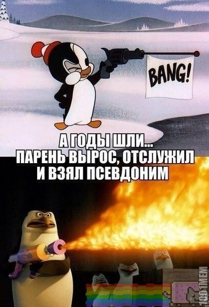 Пингвиненок !