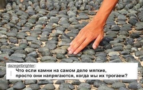 Трусливые камни