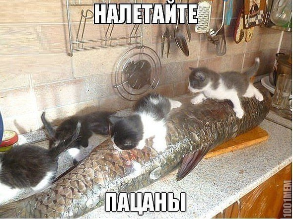 Налетаем)