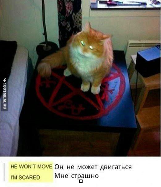 Рыжий демон