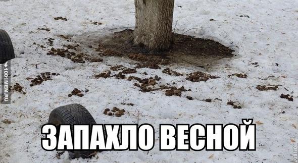 весна ....