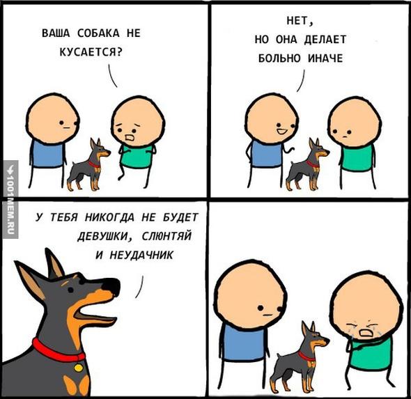 Какая милая собачка