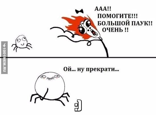 """""""Большой паук"""""""