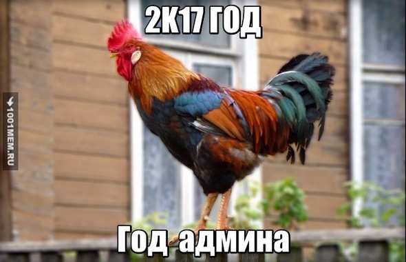 Админы всех пабликов 2017 года.