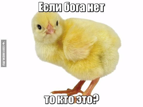 Кекий