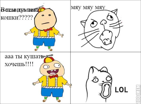 разговор с котом