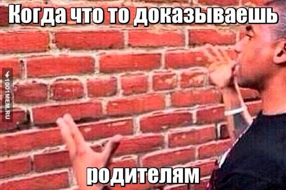 говорю со стеной