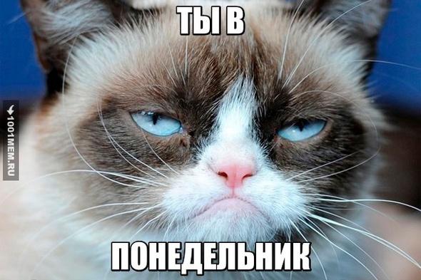 Ненавижу понедельник!
