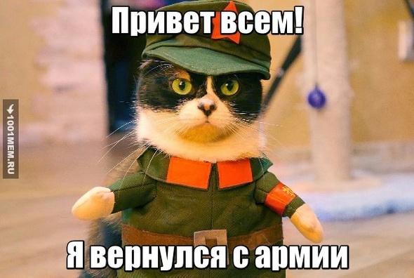 Котик в армии