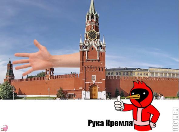 Омская птица представляет: