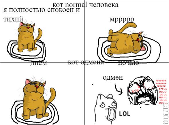 кот normal человек-кот нормального человека
